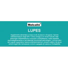 Melacalin Lupes Biotekna