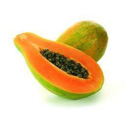 Papaya Start Up Zuccari