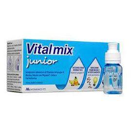 Vitalmix Junior