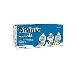 Vitalmix Mente