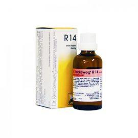 R14 Gocce Dr Reckeweg 50 ml