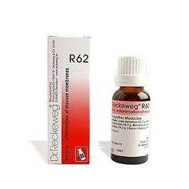 R62 Gocce Dr Reckeweg 22 ml