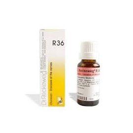 R36 Gocce Dr Reckeweg 22 ml