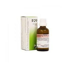 R29 Gocce Dr Reckeweg 22 ml