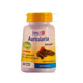 Longlife Auricularia